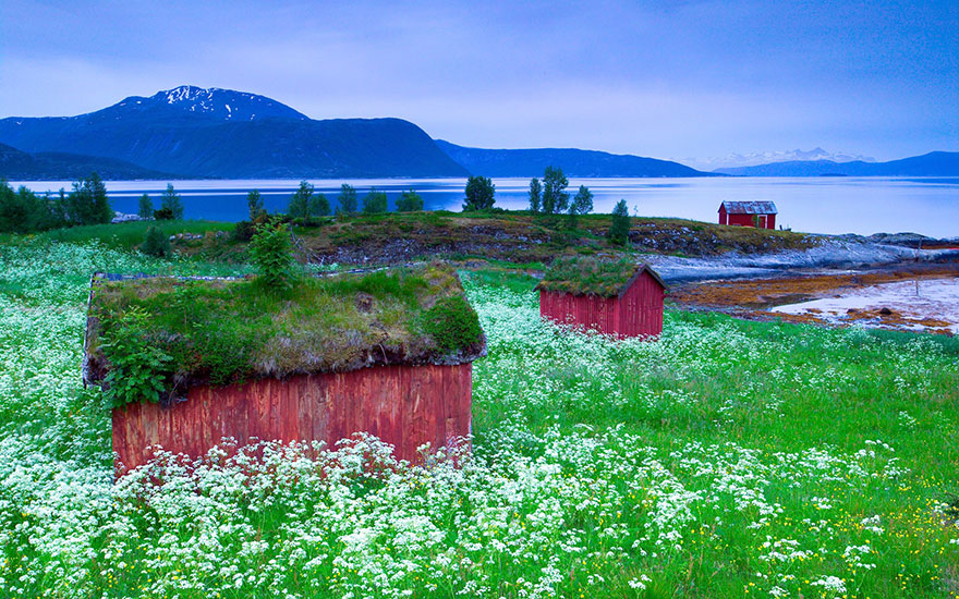 fairy-tale-viking-architecture-norway-6__880