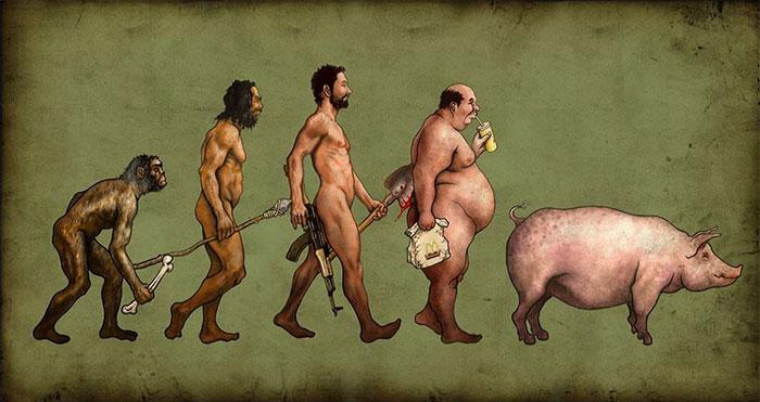 evolution-12