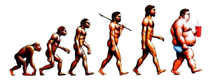 evolution-22