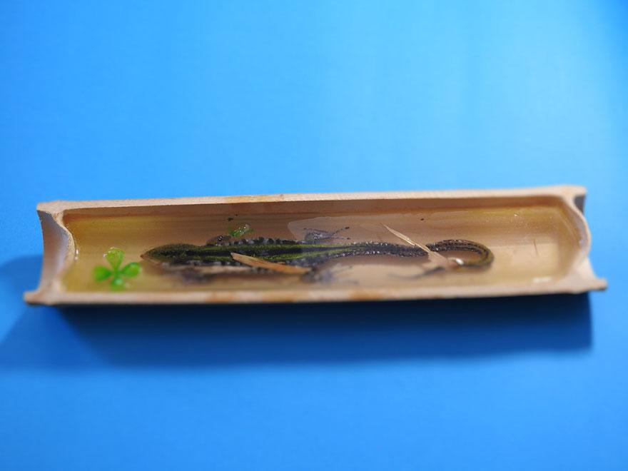3d-goldfish-art-5