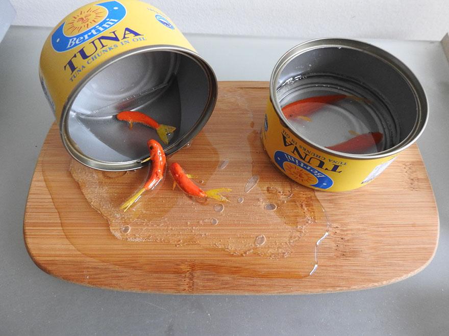 3d-goldfish-art-6