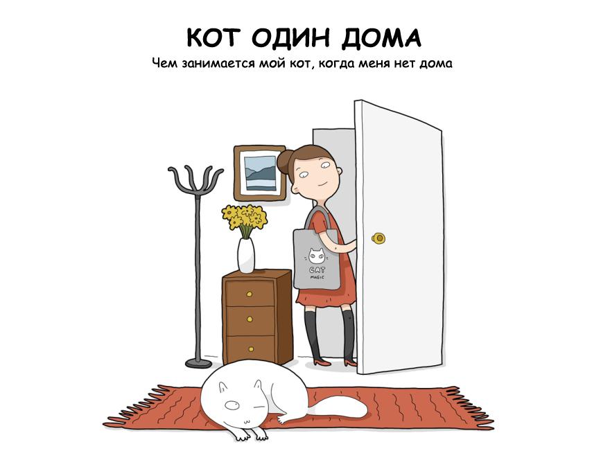 home-alone-cat-1
