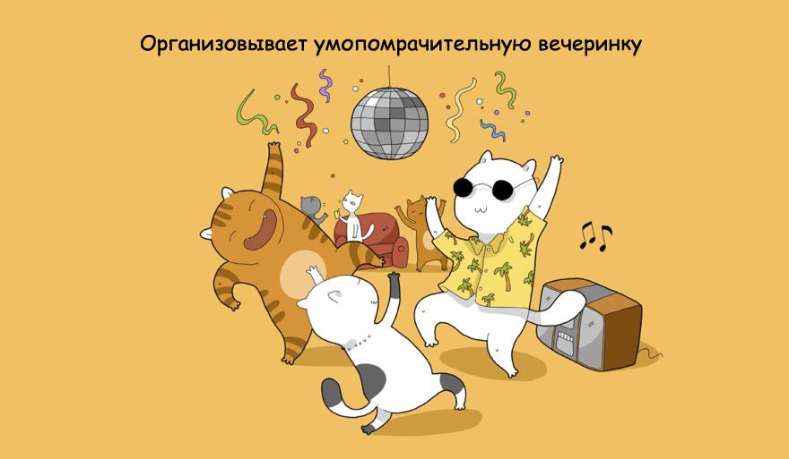 home-alone-cat-10