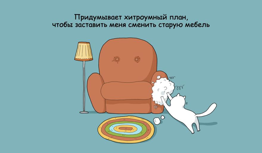 home-alone-cat-11
