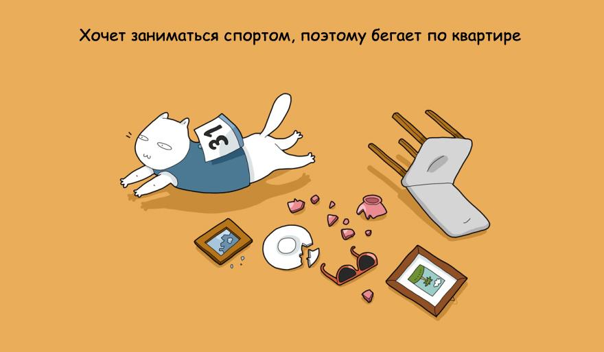 home-alone-cat-12