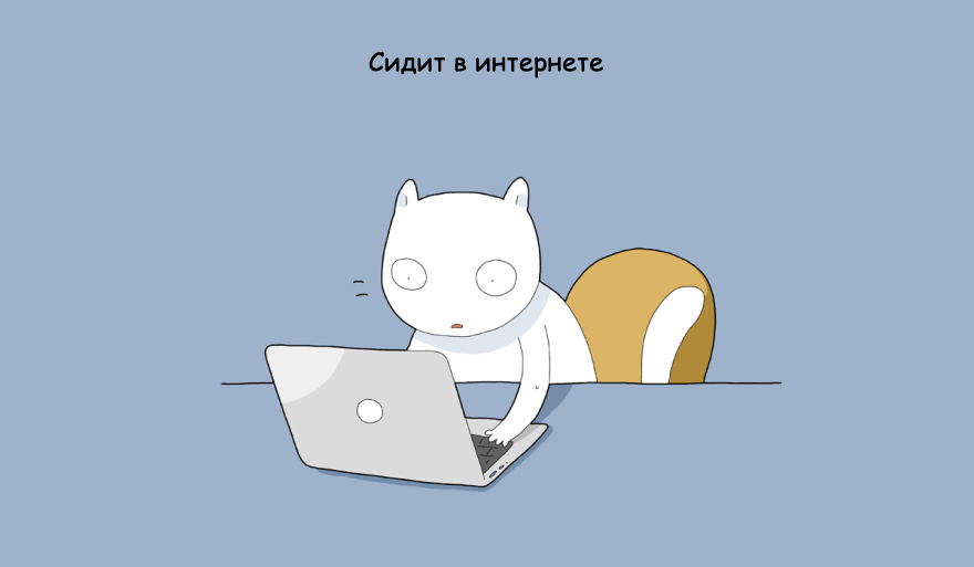 home-alone-cat-2