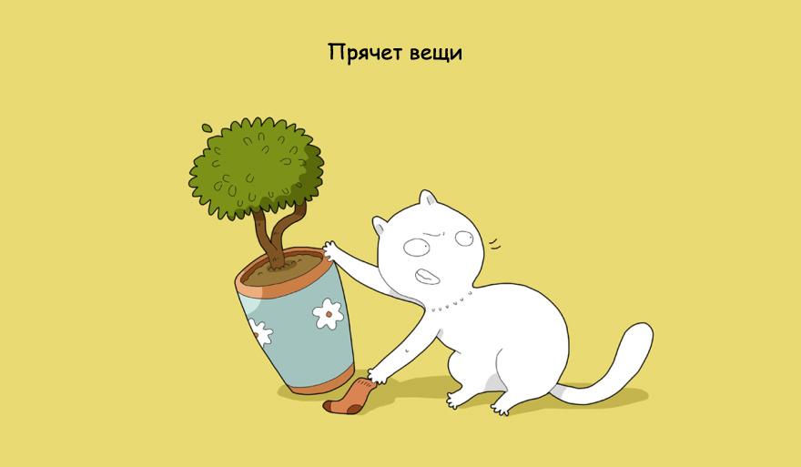 home-alone-cat-3