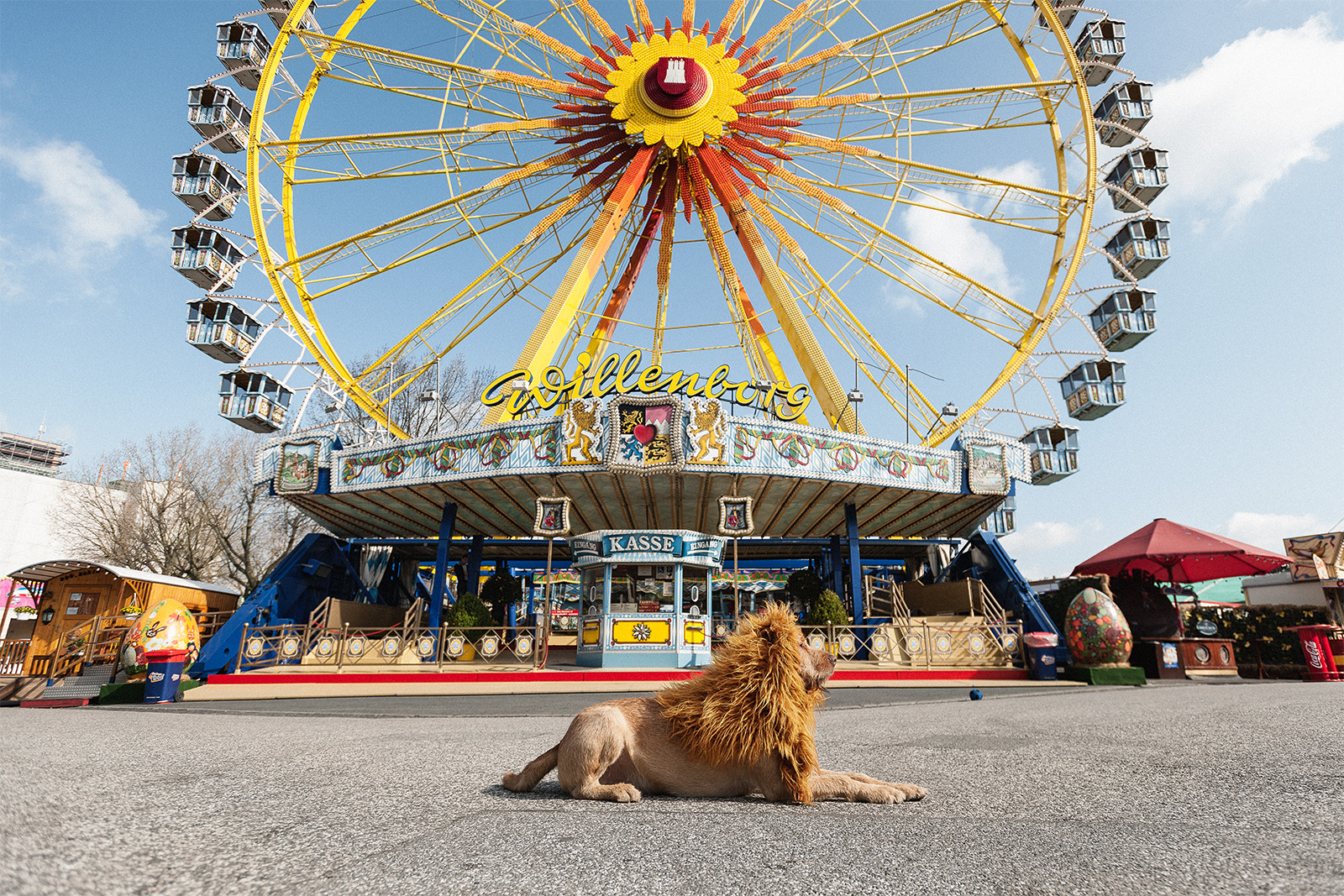 Волшебное приключение «Большого городского льва».