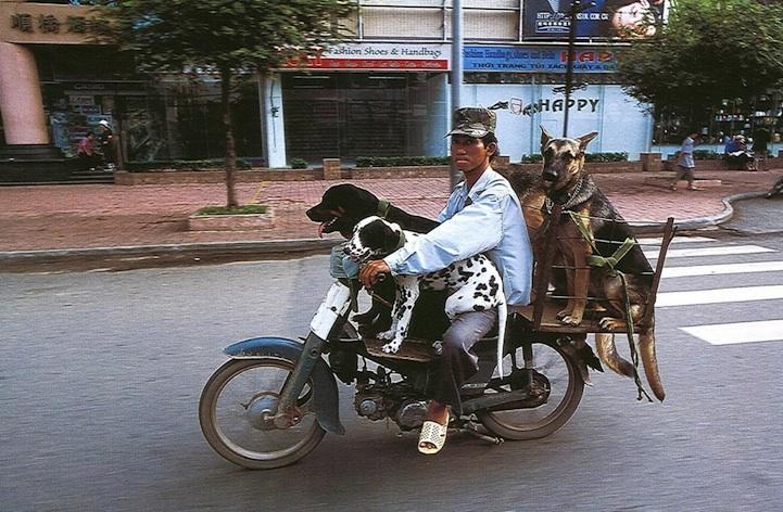 Вьетнам глазами фотографа Ханса Кемпа (Hans Kemp).