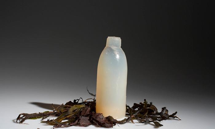 Бутылка из водорослей.