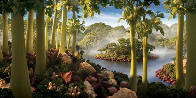 Пейзажи из продуктов питания.