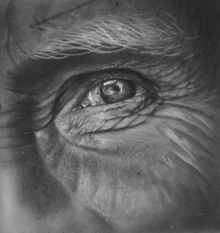 Hyperrealism-12