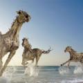 Скульптуры из обычных коряг от Джеймса Доран-Вебба