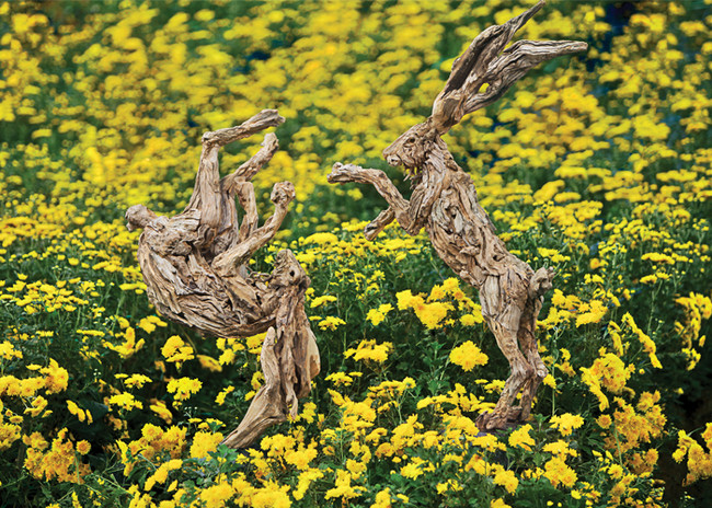 Скульптуры из коряг от Джеймса Доран-Вебба