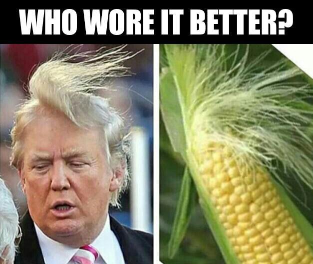 Кукуруза и Дональд Трамп