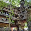 Самый большой дом на дереве: интерьер и история постройки