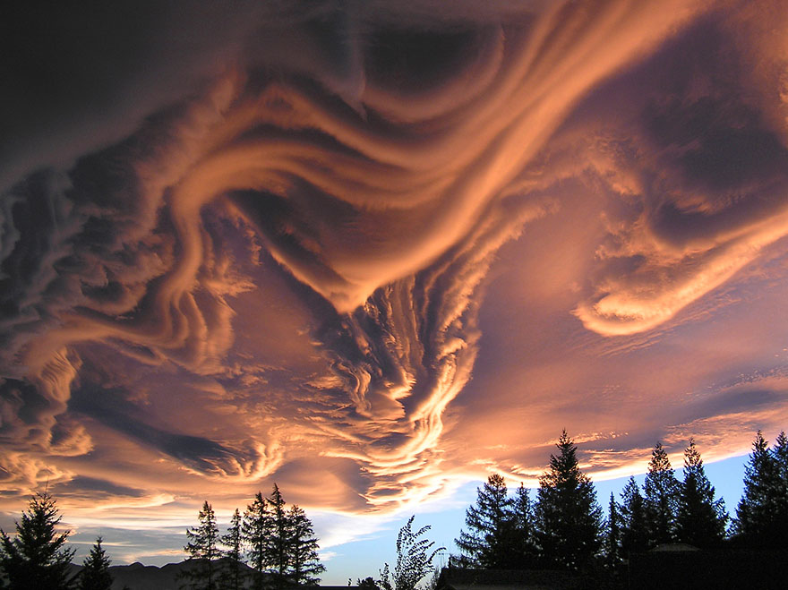 ОблакаUndulatus asperatus