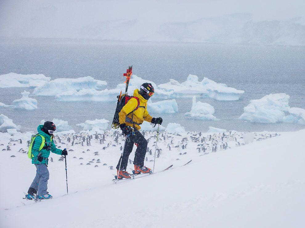 Катание на лыжах. Антарктический полуостров