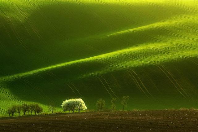 Фотографии моравских полей от Марчина Соба