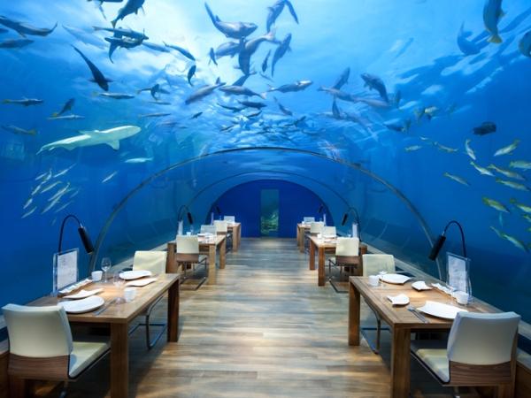 Conrad Maldives Rangali Island – остров Рангали, Мальдивы