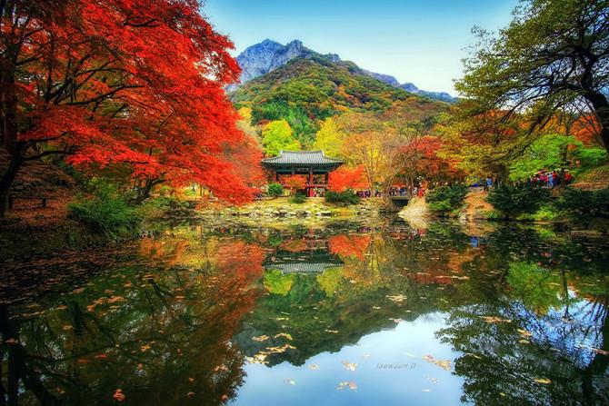 Идеальные отражения пейзажей Южной Кореи в реках и озёрах