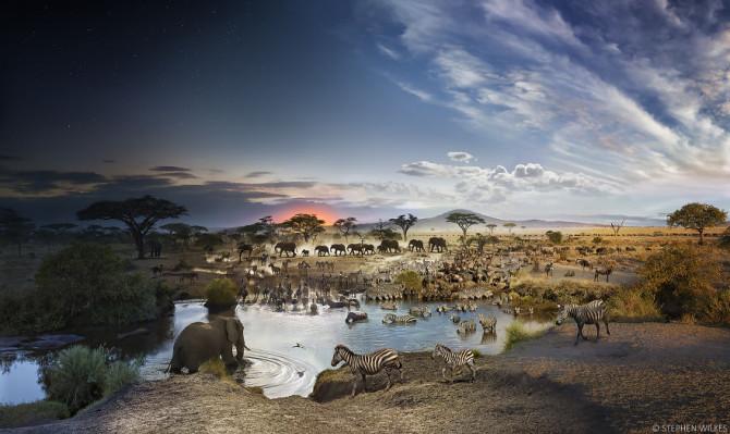 День и ночь: фотограф совместил 24 часа в каждом своём изображении