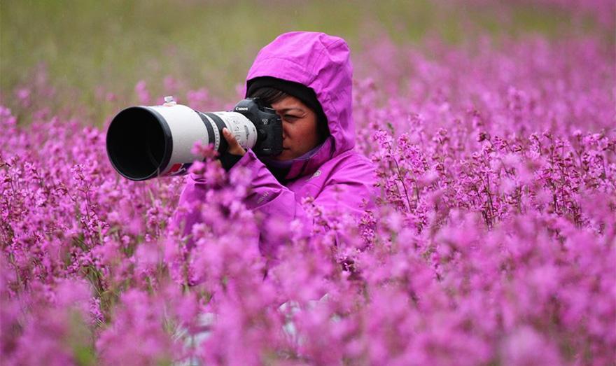 профессия фоторепортер это женских, про мужские