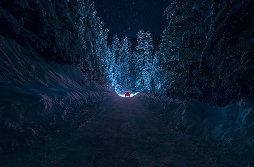 Таинственный лес Болгарии