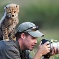 Несколько причин, почему фотографировать природу - лучшая работа в мире