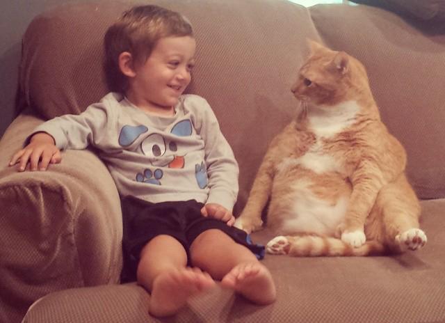 Кот охраняет маленького мальчика, следуя за ним повсюду