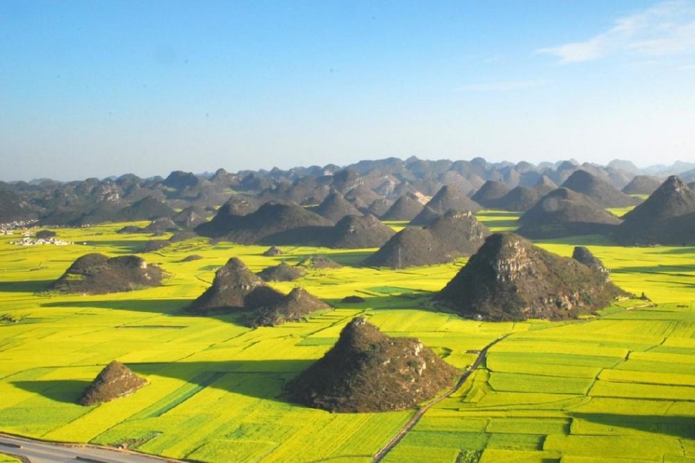 Рапсовые поля в Лопин, Китай