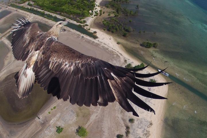 Национальный паркБарат, Бали, Индонезия