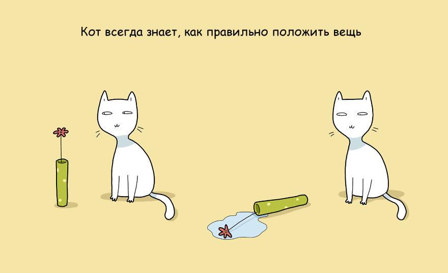 Преимущество иметь кота