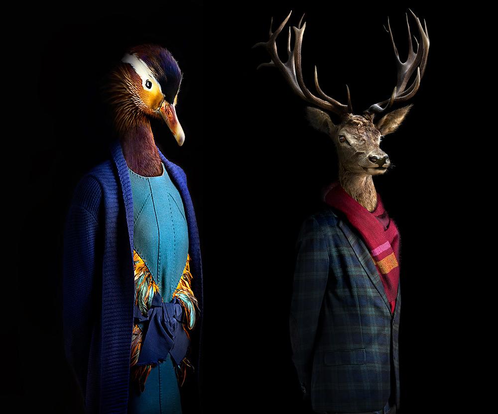 Стильные животные от Мигеля Валлинаса