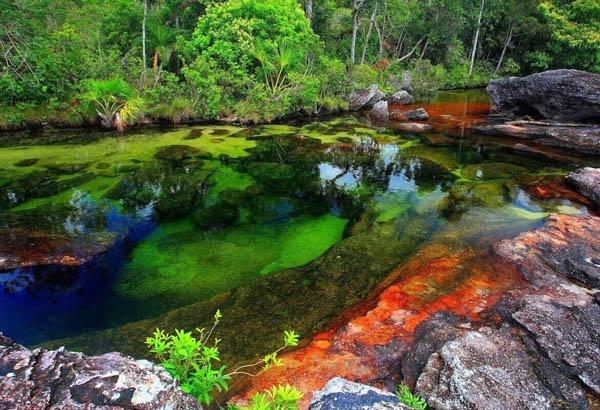 Река Каньо-Кристалес, Колумбия