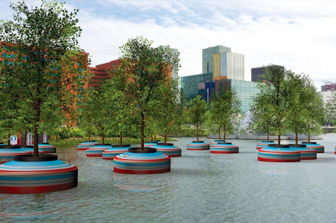 Плавающий лес в Роттердаме