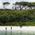 Самые интересные острова на земле