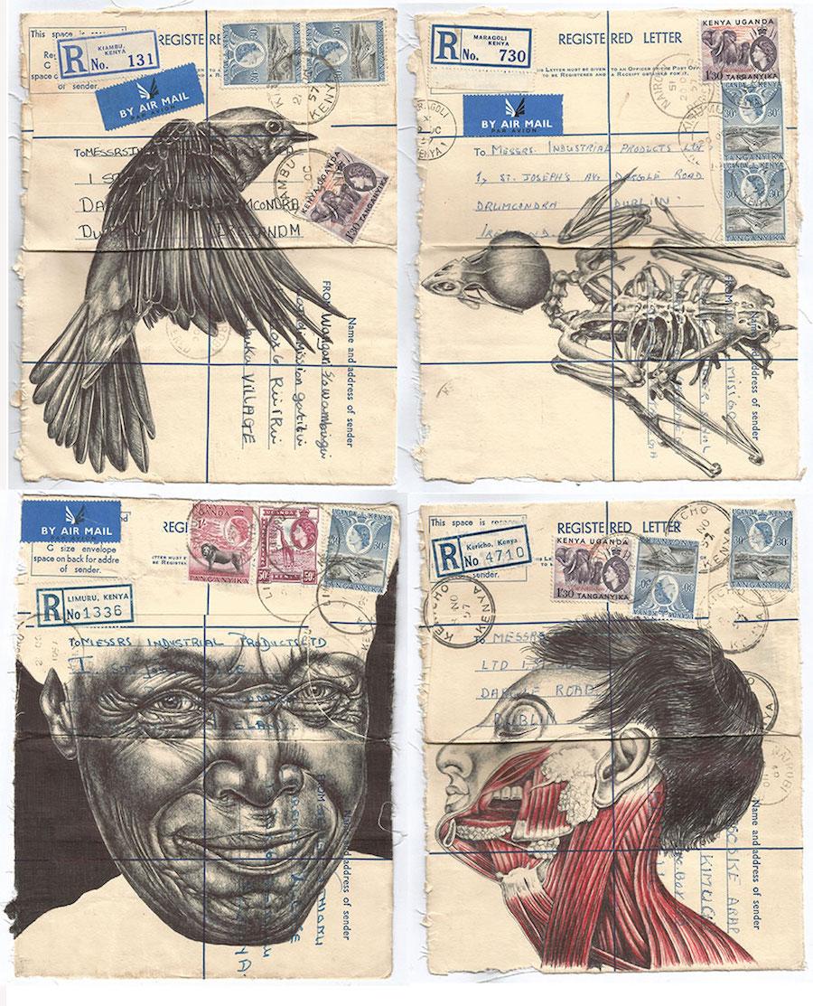 Иллюстрации шариковой ручкой от Марка Пауэлла
