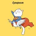 cats-super-heroes