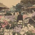 Интересный быт довоенной Японии на 100-летних открытках