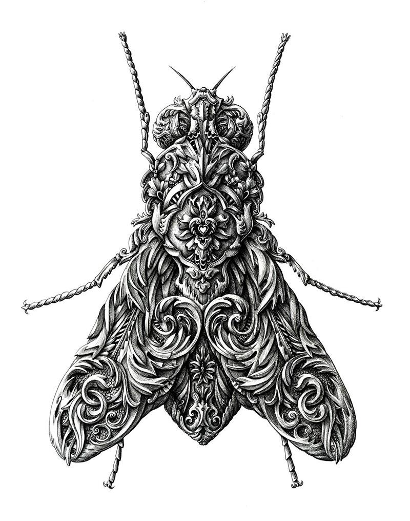 Чернильные иллюстрации от Алекса Конахина