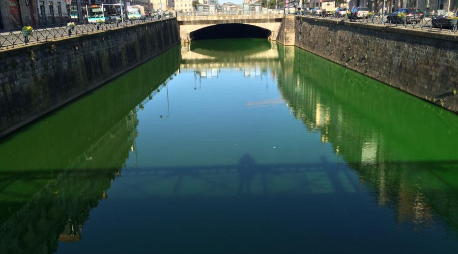 Реки во Франции окрасились в ярко-зелёный цвет