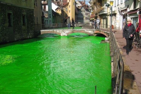Почему реки во Франции окрасились в ярко-зелёный цвет?