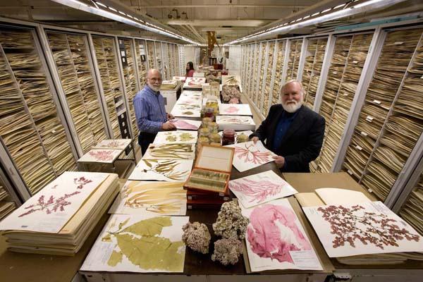 Поразительная фотосерия научного достояния Национального музея естественной истории