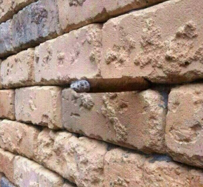 Интересная оптическая иллюзия кирпичной стены