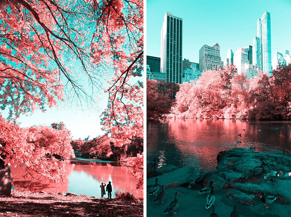 NYC-Central-Park-Paolo-Pettigiani-4