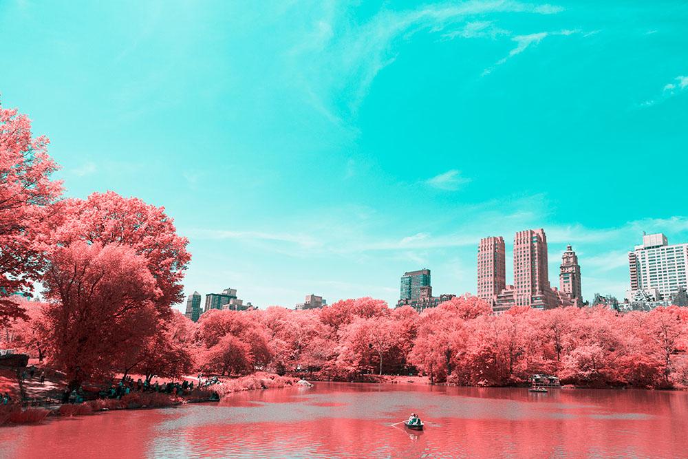 NYC-Central-Park-Paolo-Pettigiani-6