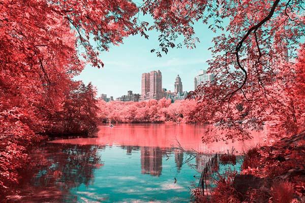 Сказочный Центральный парк Нью-Йорка через инфракрасный объектив