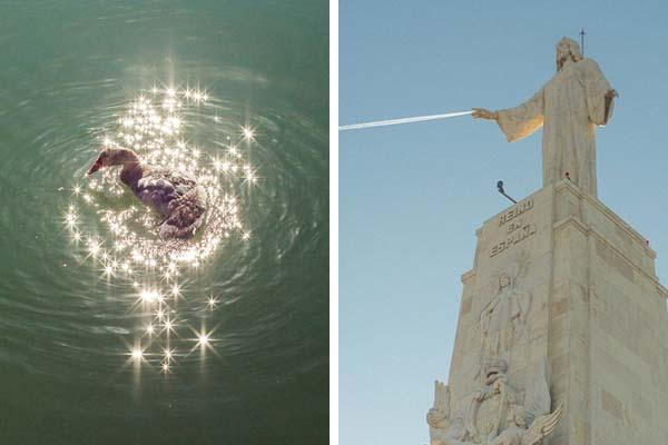 Сверхъестественные моменты синхронности в природе от Дениса Черима