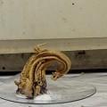 химическая реакция под названием «Змея фараона»
